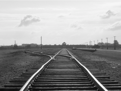 'Auschwitz i després'
