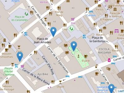 Mapa d'actius de Salut al Raval