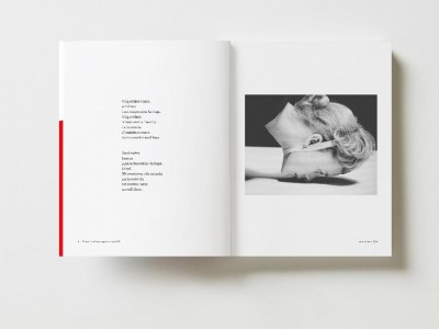 Presentació del llibre de fotopoesia Panoptik