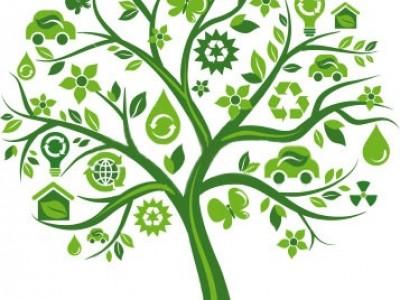 'Com ambientalitzar la teva activitat ara i aquí' (on line)