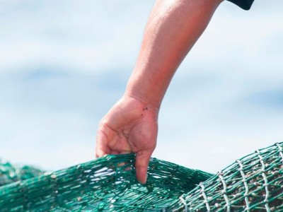 'Un dia de pesca'