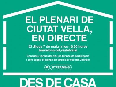 Plenari de Ciutat Vella en streaming